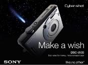 Sony Bravia - Make a Wish (2)