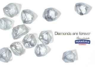 Notadolce diamonds-are-forever