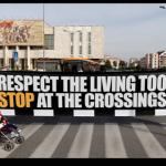 """""""Poštujmo i žive"""", nova kampanja agencije """"McCann Tirana""""- 2014"""