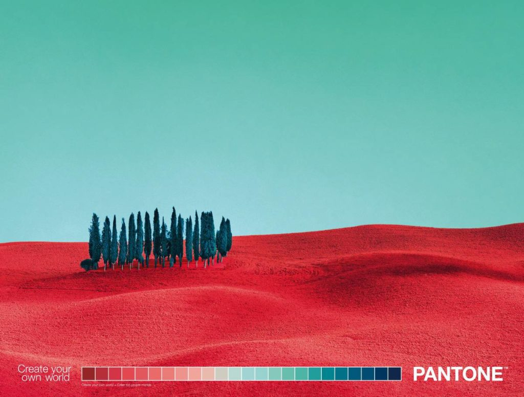 Pantone- Primer 5